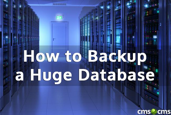 Backup a Huge Database