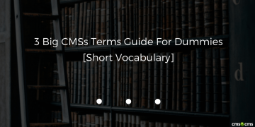 3-big-cmss-terms-for-dummies-short-vocabulary