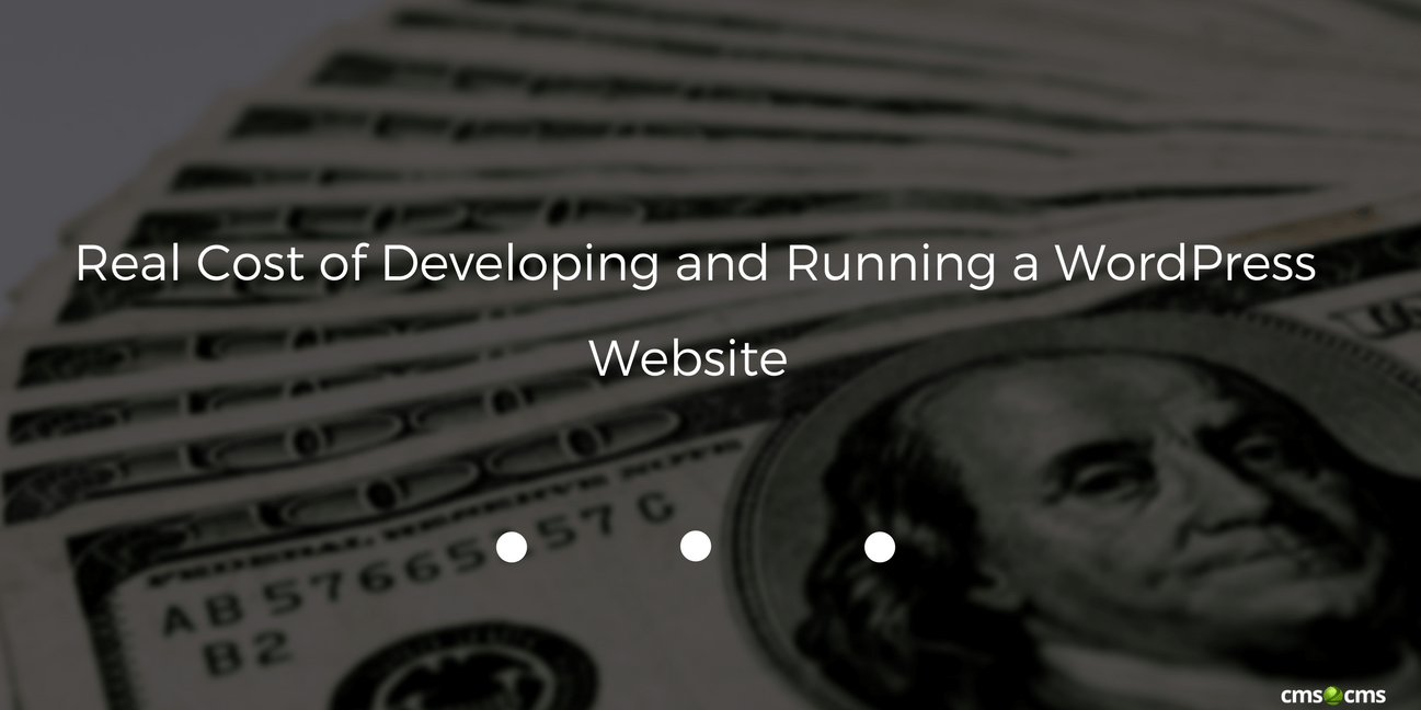 Real Cost of Developing and Running a WordPress Website